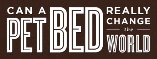 一張寵物床真的能改變世界?